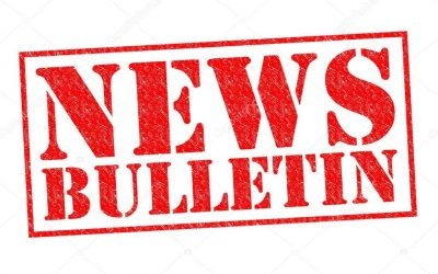 SEO News Bulletin – 25th November 2020